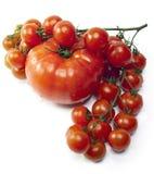 Röda tomater i droppar av vatten Royaltyfri Foto