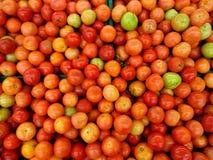 Röda tomater i hink arkivfoto