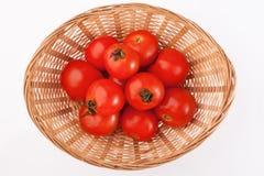 Röda tomater i korgen Royaltyfri Foto
