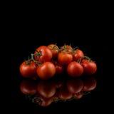 Röda tomater med stammar på mörk bakgrund Royaltyfria Bilder