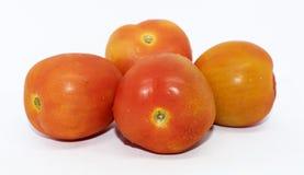 Röda tomater på bakgrund - ny sund frukt - grönsak fotografering för bildbyråer