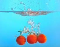 Röda tomater tappade in i vatten Royaltyfri Fotografi