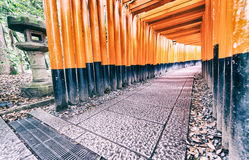 Röda Tori Gate på den Fushimi Inari relikskrin i Kyoto, Japan Fotografering för Bildbyråer