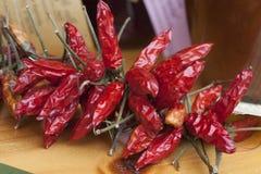 röda torkade peppar Arkivfoton