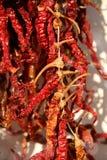 röda torkade peppar Arkivbilder
