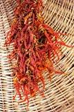 röda torkade peppar Royaltyfria Bilder