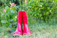Röda trädgårds- gummistöveler på grönt gräs och suddig grön backgro Arkivfoton