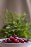 Röda tranbär på tabellen i plattan Royaltyfri Bild