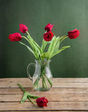 Röda tulpan Royaltyfri Foto