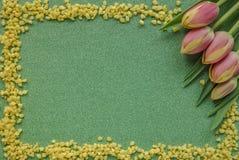 Röda tulpan med gula droppar på gräsplan blänker bakgrund med kopieringsutrymme arkivfoto