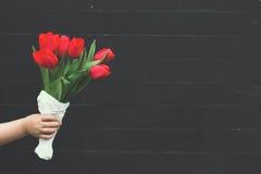 Röda tulpan mot den svarta tegelstenväggen Royaltyfri Fotografi