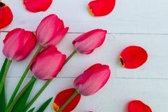Röda tulpan på vit träbakgrund Top beskådar kopiera avstånd greeting lyckligt nytt år för 2007 kort Arkivbild