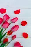 Röda tulpan på vit träbakgrund Top beskådar kopiera avstånd greeting lyckligt nytt år för 2007 kort Royaltyfria Foton
