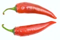 röda varma peppar för chili Arkivbild