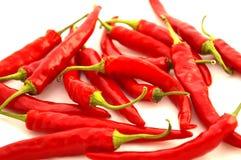 röda varma peppar för chili Royaltyfri Bild