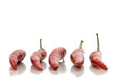 röda varma peppar för chili Royaltyfria Foton