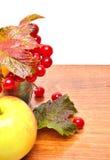 Röda viburnumbär i exponeringsglaset och ett äpple Arkivbild
