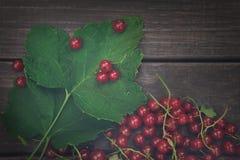 Röda vinbär överhopar closeupen på lantlig wood bakgrund Royaltyfri Foto