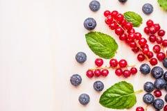 Röda vinbär, blåbär och björnbär med vattendroppar och mintkaramellsidor på vit träbakgrund, bästa sikt Royaltyfri Bild