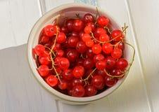 Röda vinbär i en platta Fotografering för Bildbyråer