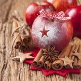 Röda vinteräpplen Fotografering för Bildbyråer