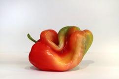 Rödaktig grön spansk peppar Royaltyfria Foton