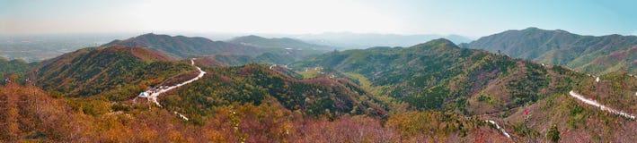 Rödaktig lönnlöv i Peking Royaltyfri Fotografi