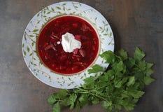 Rödbetasoppa i platta med persilja på brun bakgrund Arkivbild