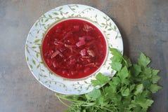 Rödbetasoppa i platta med persilja på brun bakgrund Royaltyfri Foto