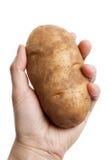Rödbrun potatis Arkivfoto