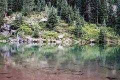 Rödbrun sjö i Colorado Arkivbilder