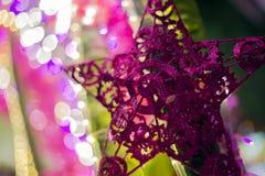 Rödbrun stjärnagarnering med bokehljus Royaltyfri Fotografi