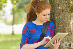 Rödhårig manstudentbenägenhet mot ett träd genom att använda hennes minnestavla royaltyfri bild