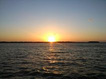 Rödhakes solnedgångbild Arkivfoto