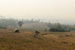 Rök från skogsbrand Arkivfoton