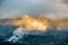 Rök & moln tände vid guld- solljus på forested lutning royaltyfri fotografi