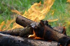 Röka och brännande vedträ Royaltyfri Fotografi