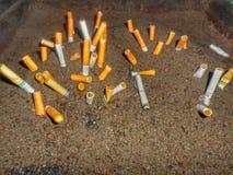 Röka stankpengar upp i rök royaltyfri fotografi