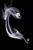 Rökelsevirvel Fotografering för Bildbyråer