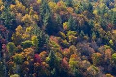 Rökig bergfärg Arkivfoton