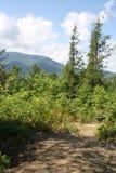 Rökig bergnationalpark 2 arkivbild