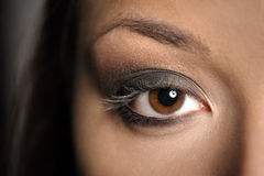 Rökig makeup för brunt öga royaltyfria bilder