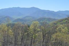 Rökiga berg i Gatlinburg, Tennessee arkivbilder