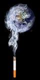 rökning Arkivbild