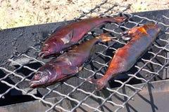 rökt fisk Arkivfoto