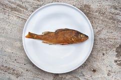 Rökt fisk Arkivbilder