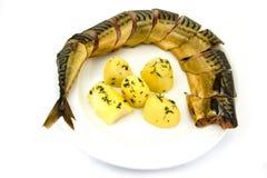 Rökt fisk med den kokta potatisen på en vit bakgrund arkivbild