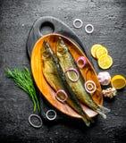 Rökt fisk med dill, skivor av citronen och lök royaltyfri fotografi