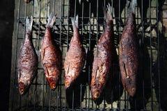 Rökt fisk som lagas mat i en liten rökare arkivbilder