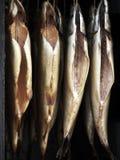 rökt mackerel Fotografering för Bildbyråer